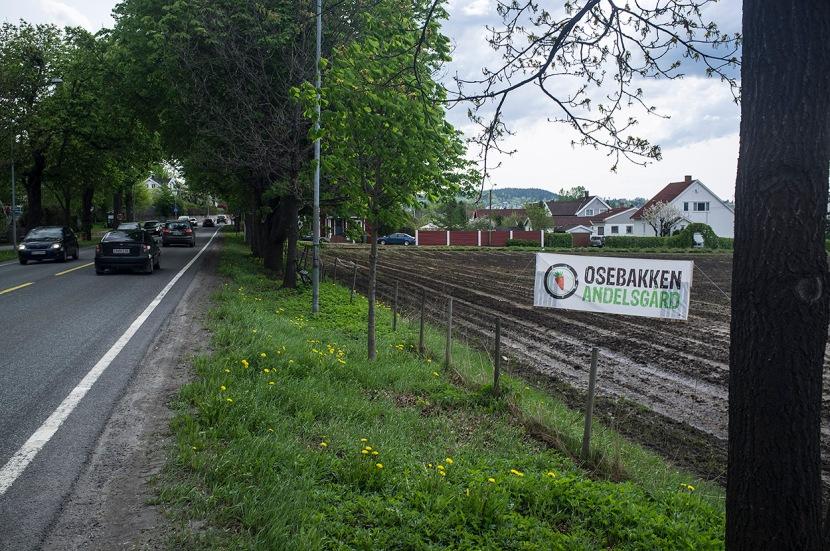 Andelsgård_3714