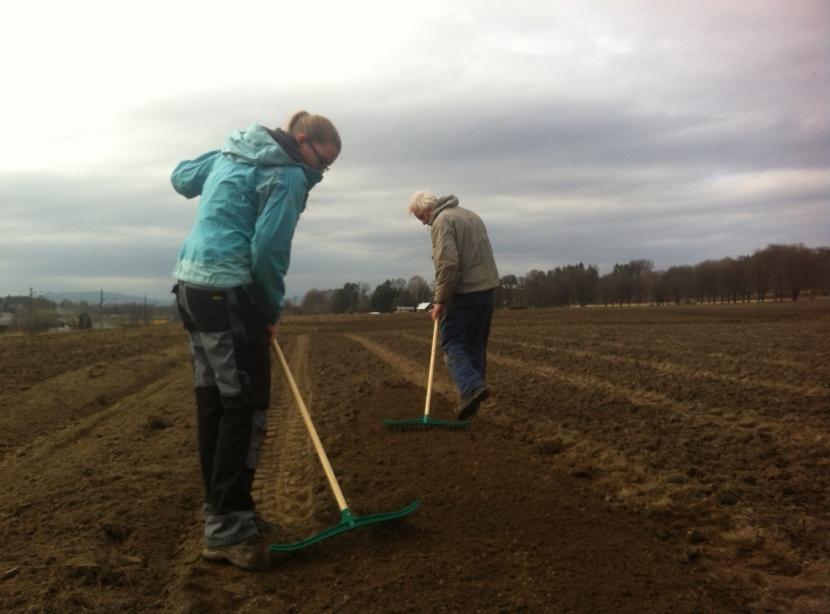 Eline Helleborg og Tom Harald Eckell, viste oss hvordan det skal forberedes for såing. Osebakken andelsgård er for øvrig nå stolte eiere av 6 stk. høyriver.
