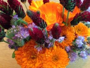 Andelshaver Jorunn plukket blomster i helgen som var.