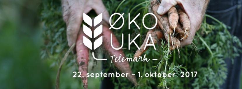 Facebook-Header-Telemark