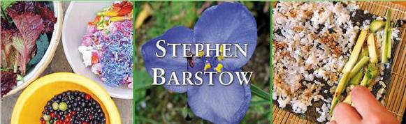 StevenBarstov